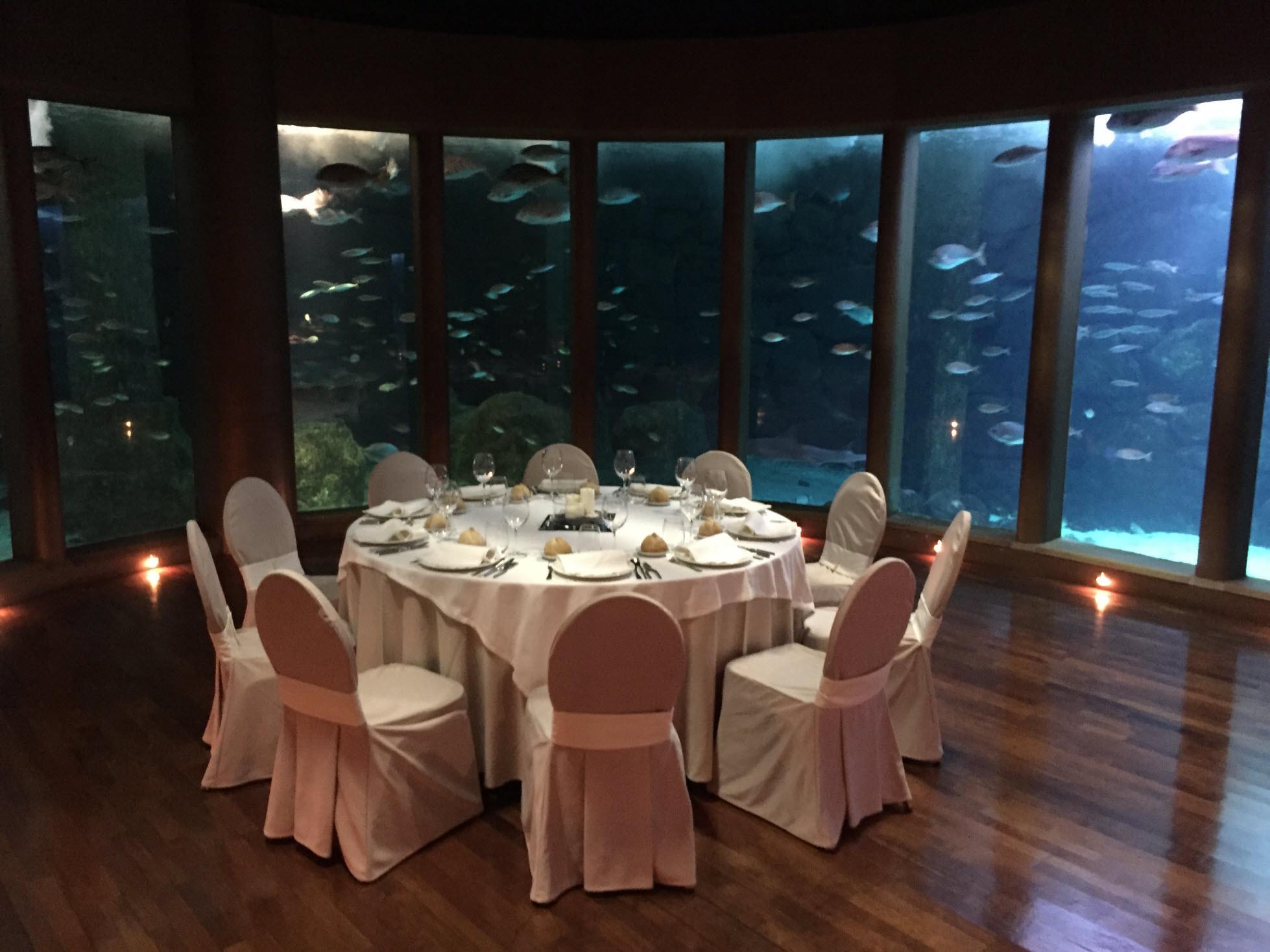 Galer a nautilus restaurante finisterrae acuario - Restaurante julio verne ...
