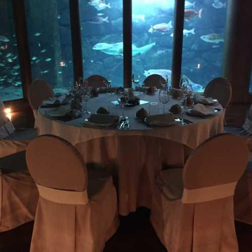 Cenas, banquetes, eventos, cocketeles un ambiente único