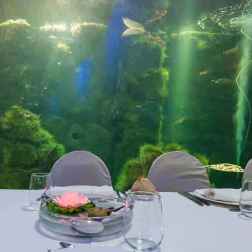 Una cena con sensaciones diferentes