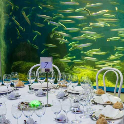 Aquarium Finisterrae, restaurante, cafetería, cocktelería.