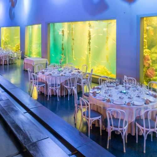 Tus cenas  con el mejor ambiente y la mejor calidad Restaurante Finisterrae