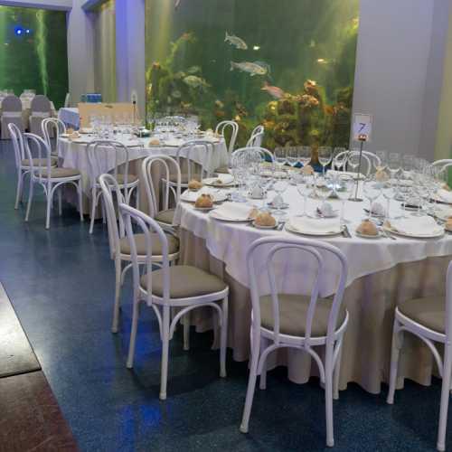 Todo tipo de cenas, banquetes, cockteles en un ambiente sin igual